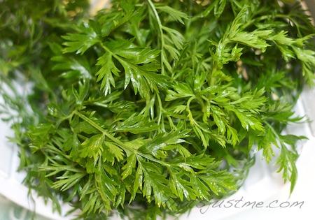 carrot green tops