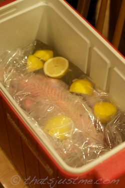closed brining bag
