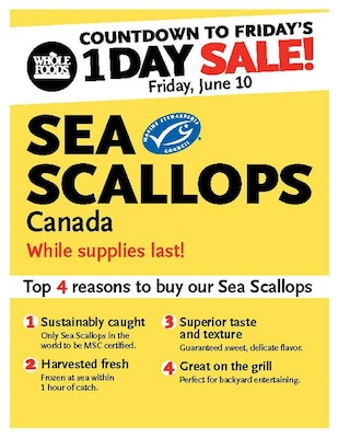 whole foods one day only scallops on sale