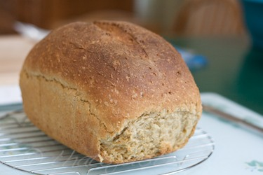 whole wheat bread made with cornmeal and barley with sesame seeds