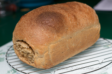 fresh baked loaf of 100% whole wheat bread with caraway and poppy seeds